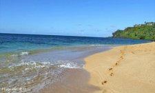 Kauai sun