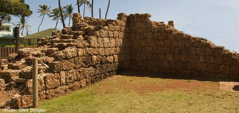 Stone wall remains on Kauai