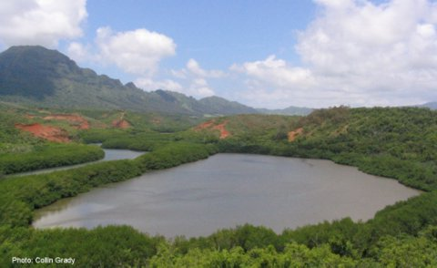 Menehune fish pond on Kauai